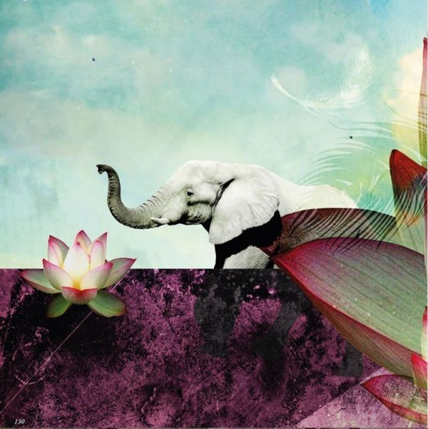 Peek inside the In-between Book - an elephant and a lotus flower